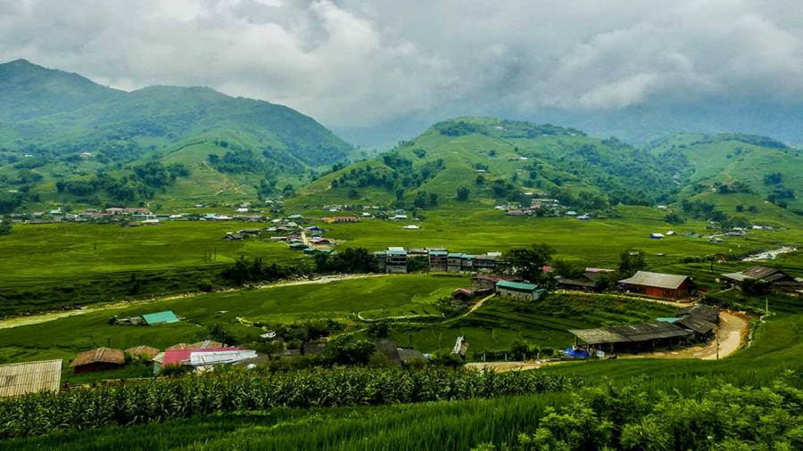 Green rice paddies in Sapa ( Lao Chai village)