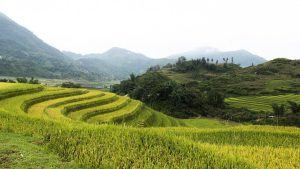 Sapa Private Tours
