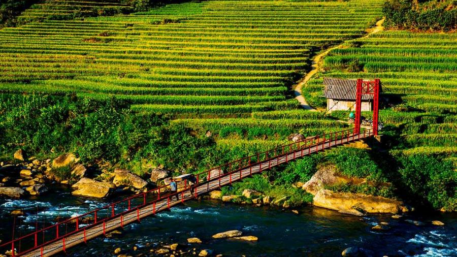 Hanging bridge in Su Pan, Sapa, Vietnam