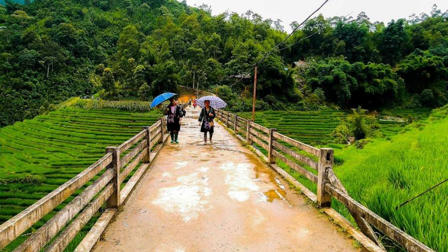 Hmong women are working on the hanging bridge