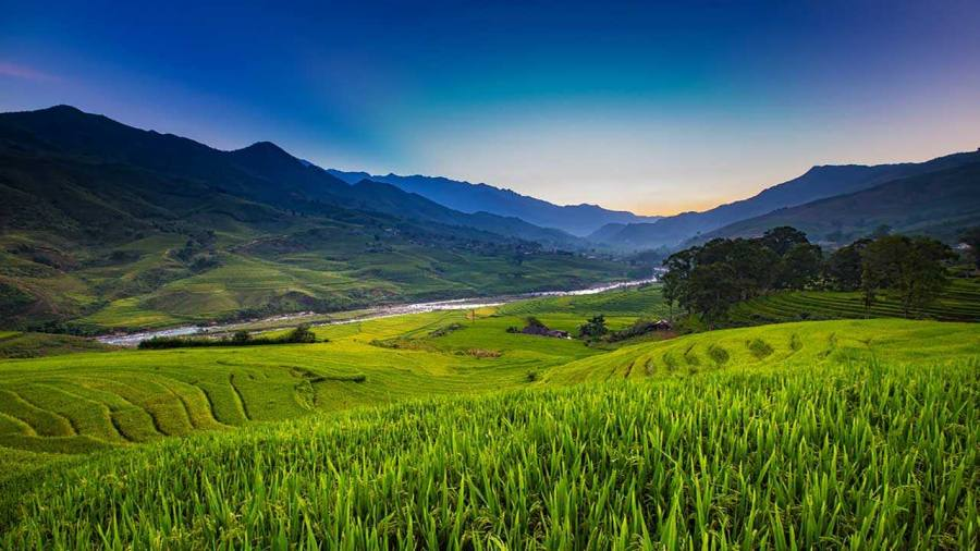 Muong Hoa Valley, look from Giang Ta Chai village