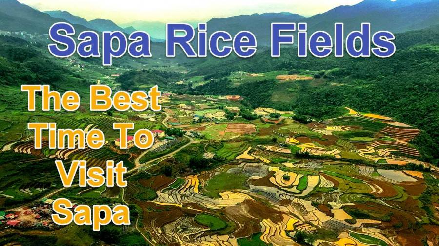 Sapa Rice Fields | The Best Time To Visit Sapa