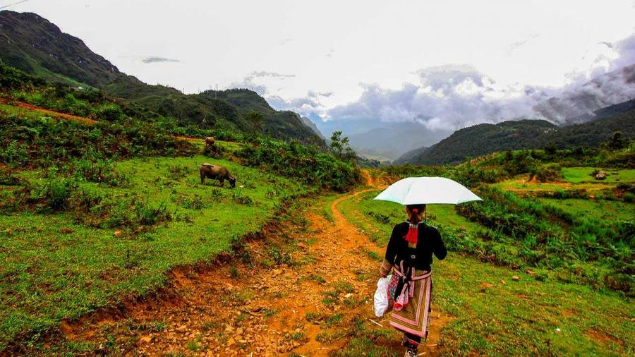 Amazing Trekking with Trekking Tour Sapa