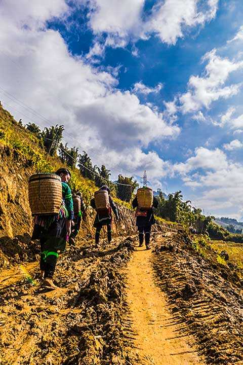 Trekking in Sapa with Hmong women guide