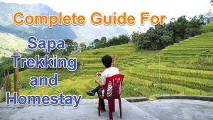 A Complete Guide For Sapa Trekking and Homestay