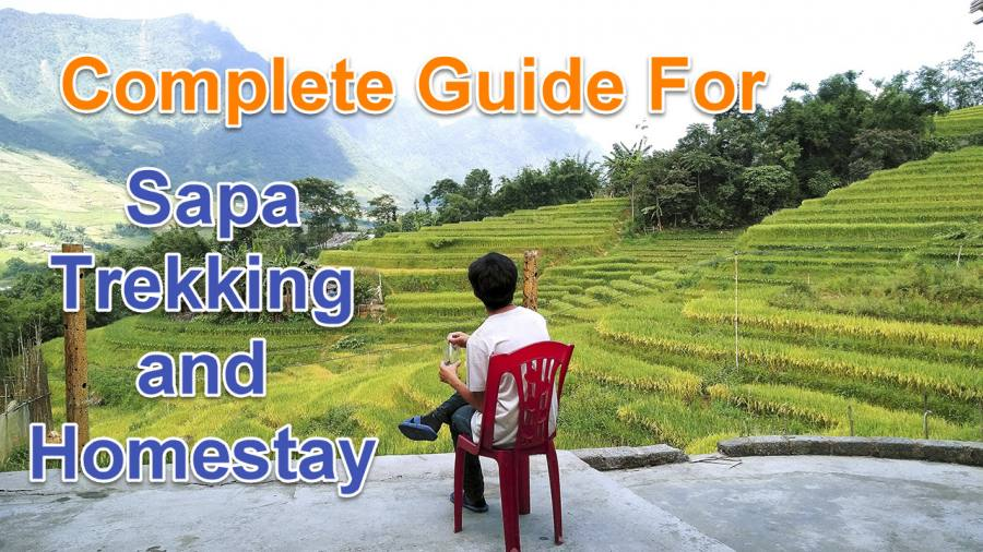 Guide For Sapa Trekking and Homestay