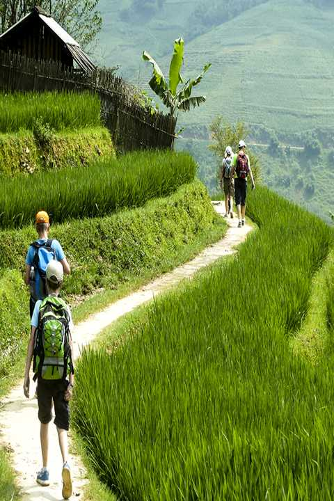 Hiking to rice fields