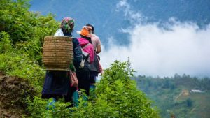 A Complete Guide for FIRST TIME visit SAPA (Should Not Miss)
