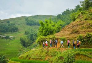 Sapa rice fields trekking